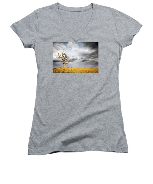 Through The Storms Women's V-Neck T-Shirt (Junior Cut) by Lana Trussell