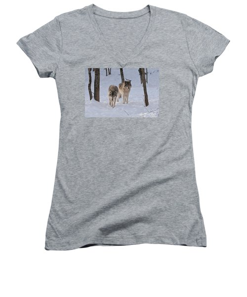 Women's V-Neck T-Shirt (Junior Cut) featuring the photograph Timber Wolf Pair  by Wolves Only