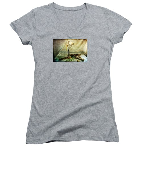 Today's Find Women's V-Neck T-Shirt (Junior Cut) by Randi Grace Nilsberg