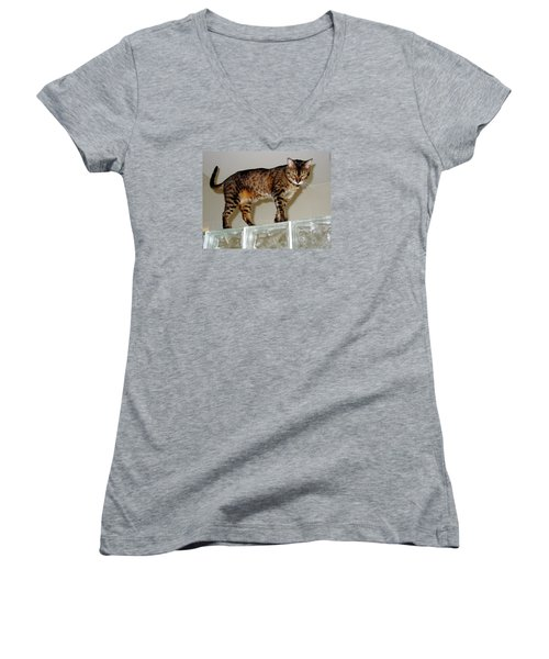 Women's V-Neck T-Shirt (Junior Cut) featuring the photograph Tora On Glass II by Phyllis Kaltenbach