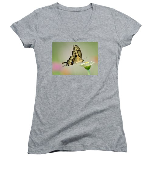 Torn Beauty Women's V-Neck