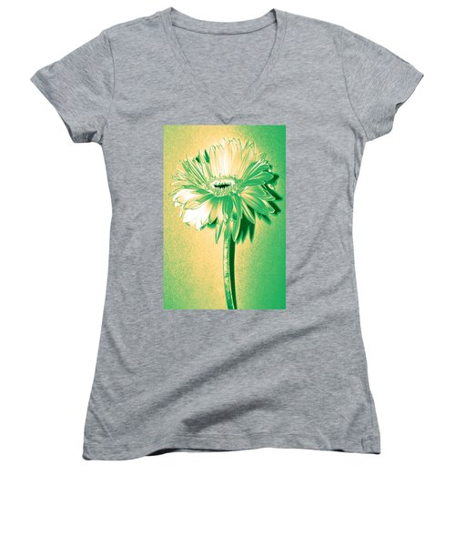 Touch Of Turquoise Zinnia Women's V-Neck T-Shirt (Junior Cut)