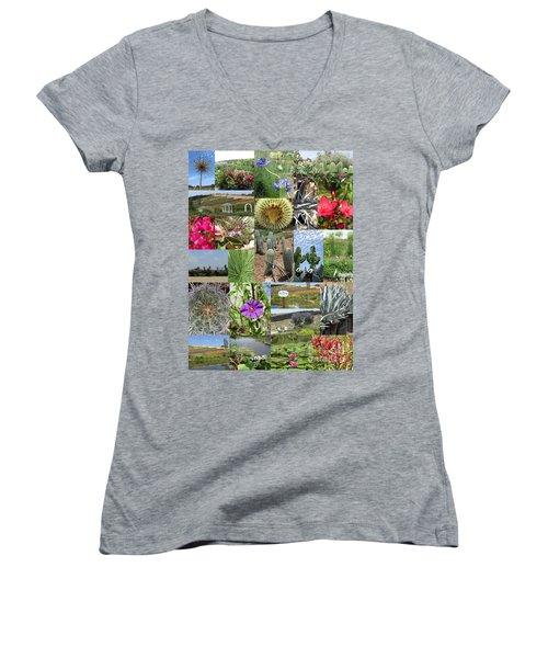 Women's V-Neck T-Shirt featuring the photograph Traveling Baby Pandas At The Plant Nursery. California. by Ausra Huntington nee Paulauskaite