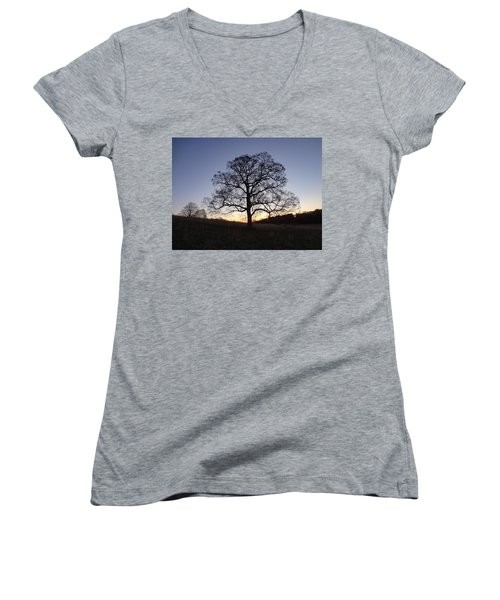 Women's V-Neck T-Shirt (Junior Cut) featuring the photograph Tree At Dawn by Michael Porchik