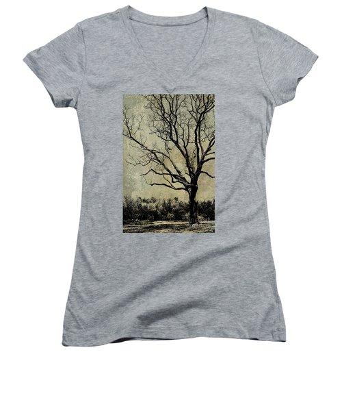 Tree Before Spring Women's V-Neck T-Shirt