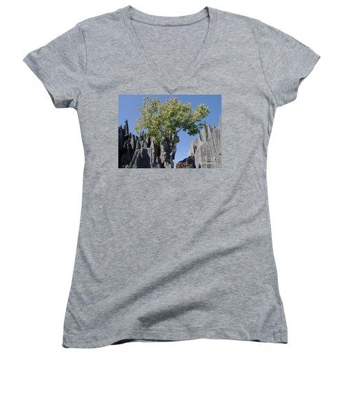 Tree In The Tsingy De Bemaraha Madagascar Women's V-Neck T-Shirt (Junior Cut) by Rudi Prott
