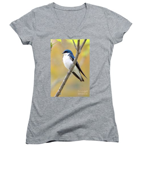 Tree Swallow Women's V-Neck (Athletic Fit)