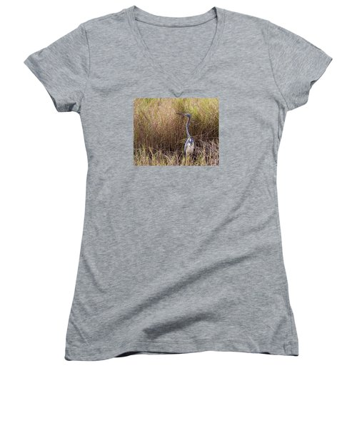 Women's V-Neck T-Shirt (Junior Cut) featuring the photograph Tricolored Heron Peeping Over The Rushes by John M Bailey
