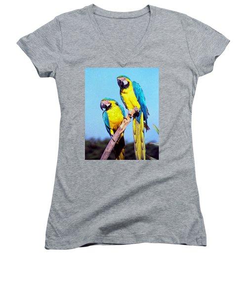Tropical Parrots In San Francisco Women's V-Neck T-Shirt