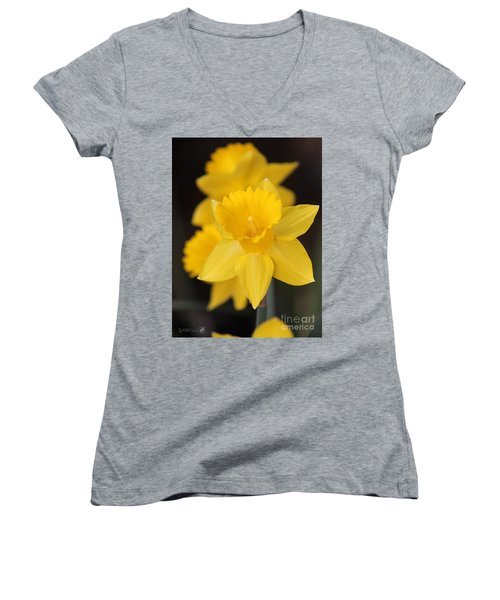 Trumpet Daffodil Named Exception Women's V-Neck T-Shirt (Junior Cut) by J McCombie