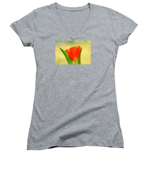 Tulip  Women's V-Neck T-Shirt (Junior Cut) by Menachem Ganon