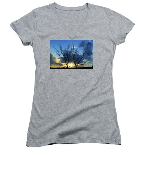 Twin Trees Women's V-Neck T-Shirt