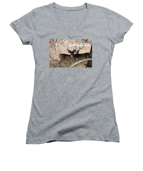 Women's V-Neck T-Shirt (Junior Cut) featuring the photograph Two In The Bush by Jim Garrison