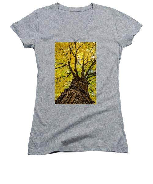 Under The Yellow Canopy Women's V-Neck T-Shirt (Junior Cut) by Debra Martz
