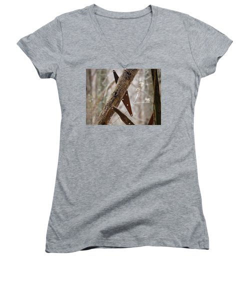 Women's V-Neck T-Shirt (Junior Cut) featuring the photograph Unhinged by Nick Kirby