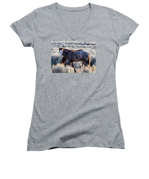 Velvet - Young Colt In Sand Wash Basin Women's V-Neck
