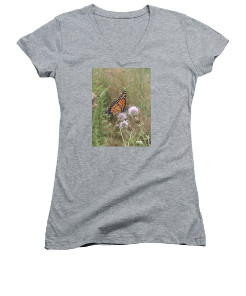 Women's V-Neck T-Shirt (Junior Cut) featuring the photograph Viceroy On Thistle by Robert Nickologianis