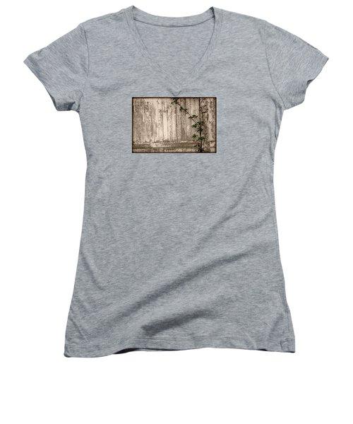 Vine And Fence Women's V-Neck T-Shirt