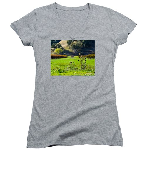 Vineyard Thistles Women's V-Neck T-Shirt