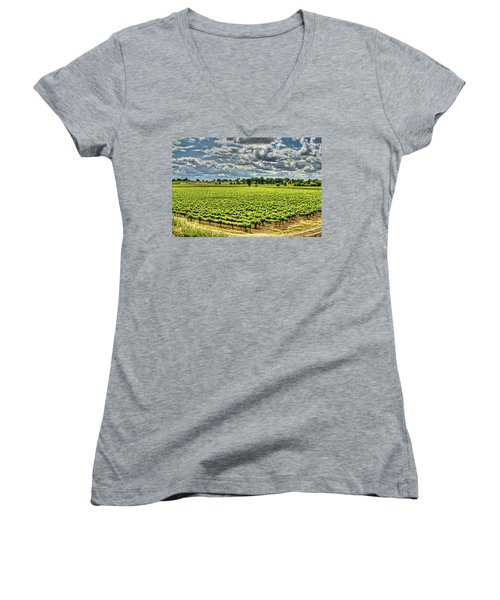 Vineyards Almost Ripe Women's V-Neck (Athletic Fit)