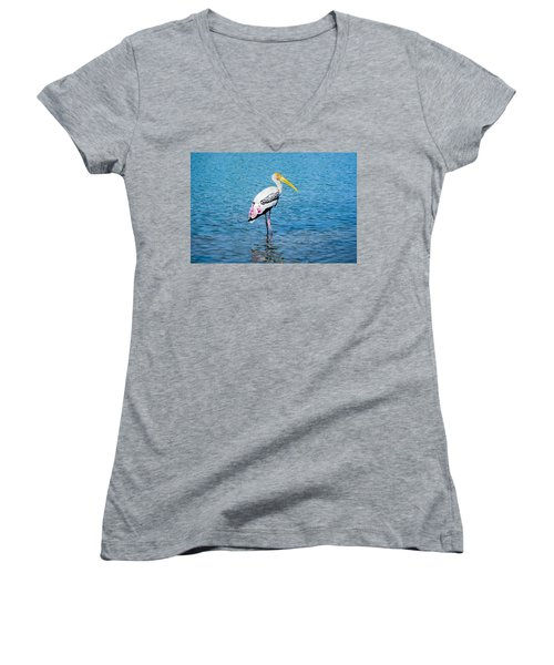Wading Stork Women's V-Neck T-Shirt