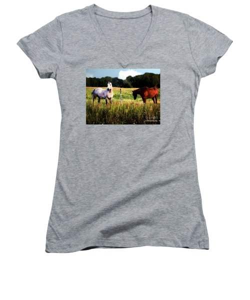 Waiting For Apples Women's V-Neck T-Shirt (Junior Cut) by RC deWinter