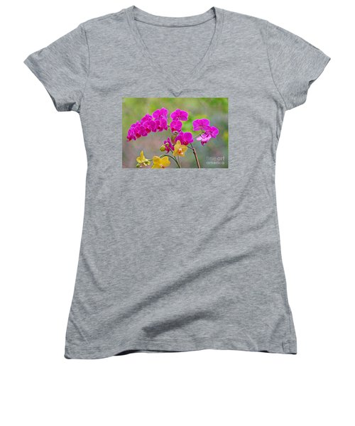 Warbler Posing In Orchids Women's V-Neck T-Shirt