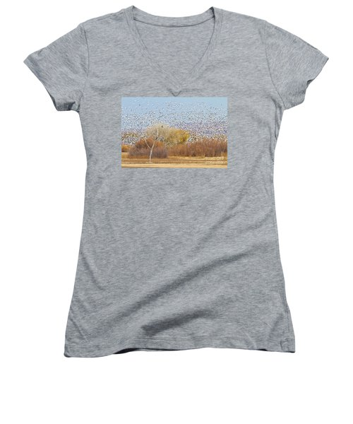 Women's V-Neck T-Shirt (Junior Cut) featuring the photograph Watching Over The Flock by Bryan Keil