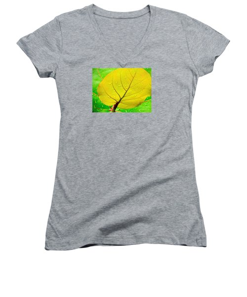 Women's V-Neck T-Shirt (Junior Cut) featuring the photograph Weathered by Joy Hardee