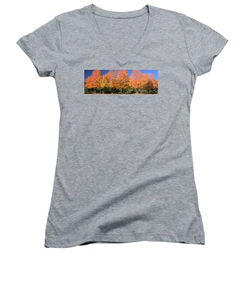 Women's V-Neck T-Shirt (Junior Cut) featuring the photograph Welcome Autumn by Gordon Elwell