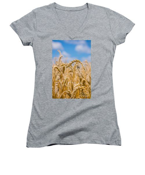 Wheat Women's V-Neck T-Shirt