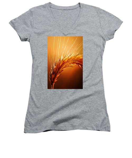 Wheat Close-up Women's V-Neck T-Shirt (Junior Cut) by Johan Swanepoel
