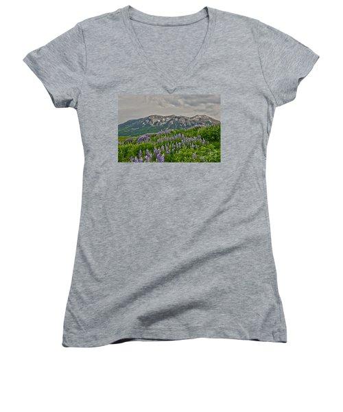 Whetstone Sunset Women's V-Neck T-Shirt
