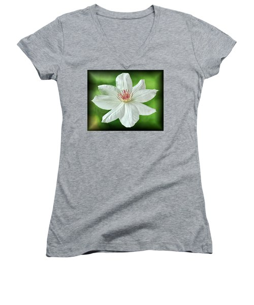 White Clematis Women's V-Neck
