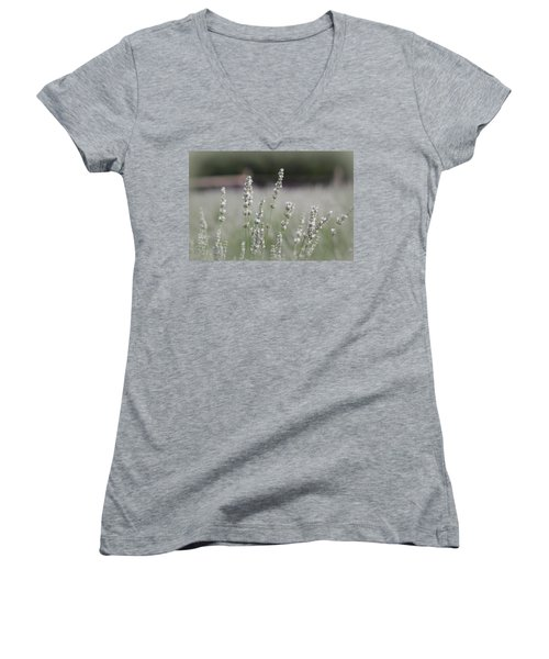 Women's V-Neck T-Shirt (Junior Cut) featuring the photograph White Lavender by Lynn Sprowl