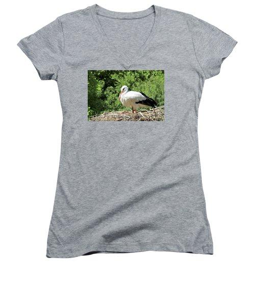 Women's V-Neck T-Shirt (Junior Cut) featuring the photograph White Stork  by Teresa Zieba