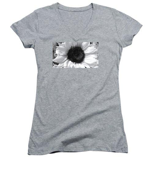 Women's V-Neck T-Shirt (Junior Cut) featuring the photograph White Sunflower by Jeannie Rhode