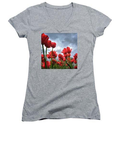 Whole Lotta Red Women's V-Neck T-Shirt