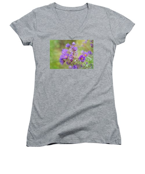 Wild Flowers In The Fall Women's V-Neck