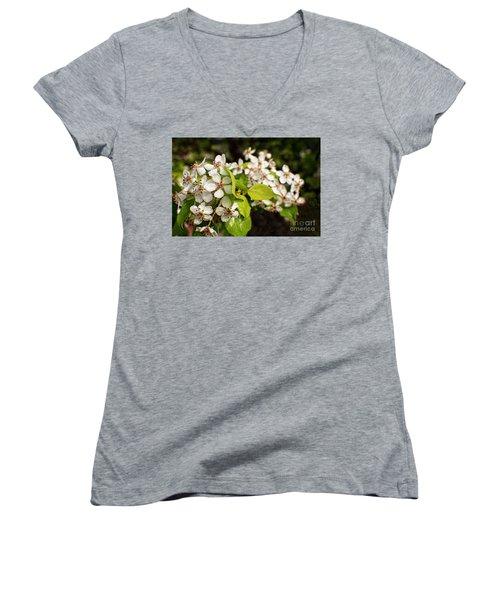 Wild Plum Blossoms Women's V-Neck T-Shirt