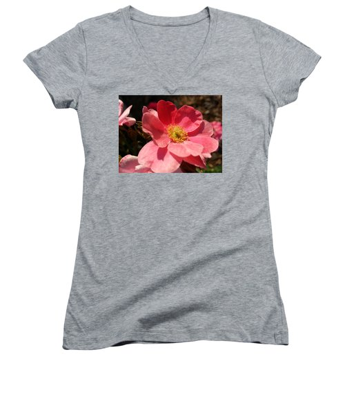 Wild Rose Women's V-Neck T-Shirt (Junior Cut) by Caryl J Bohn