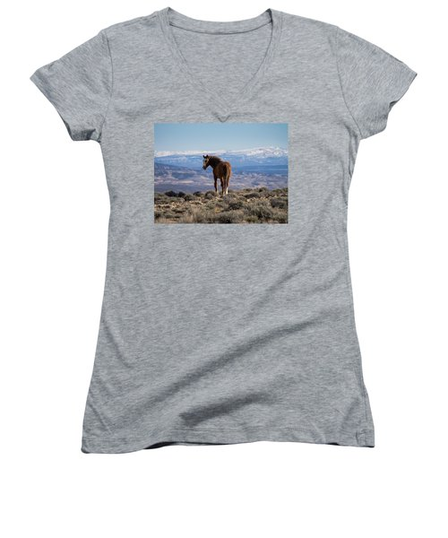 Wild Stallion Of Sand Wash Basin Women's V-Neck