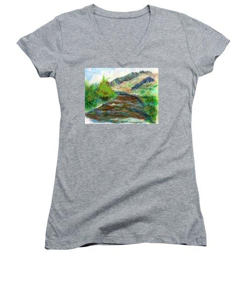 Willow Creek In Spring Women's V-Neck T-Shirt