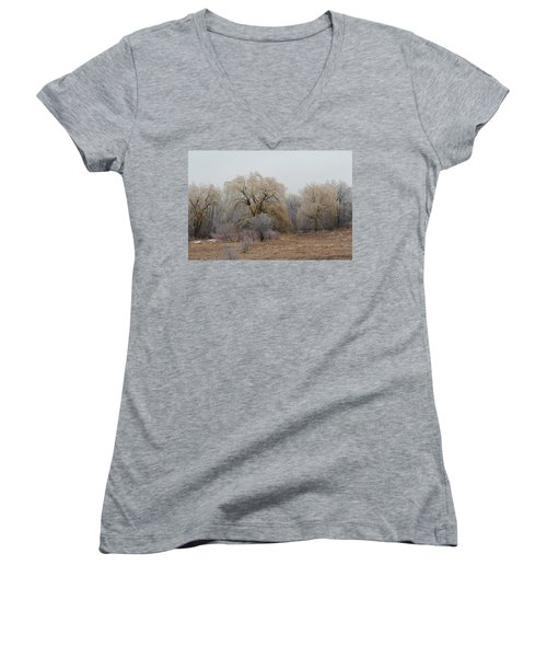 Willow Trees Iced Women's V-Neck T-Shirt