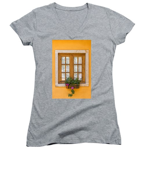 Window With Flowers Women's V-Neck T-Shirt