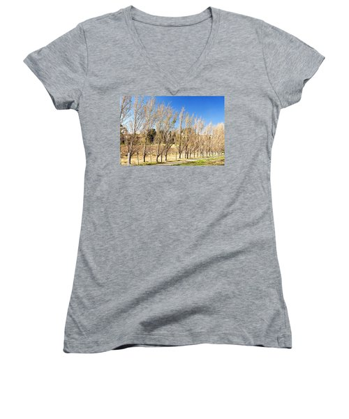 Winery Women's V-Neck