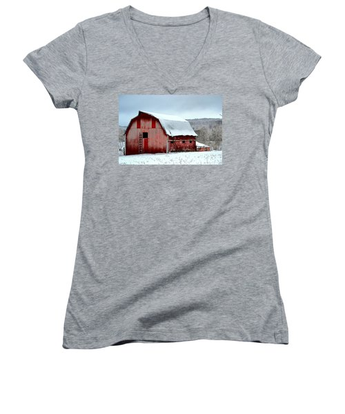 Winter Barn Women's V-Neck T-Shirt (Junior Cut) by Deena Stoddard