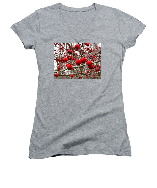 Winter Berryscape Women's V-Neck (Athletic Fit)