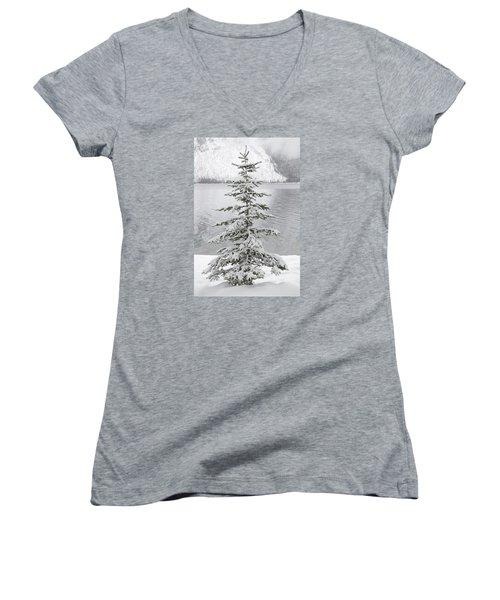 Winter Decor Women's V-Neck T-Shirt (Junior Cut) by Diane Bohna