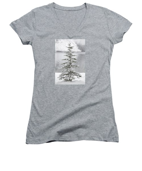 Winter Decor Women's V-Neck T-Shirt (Junior Cut)